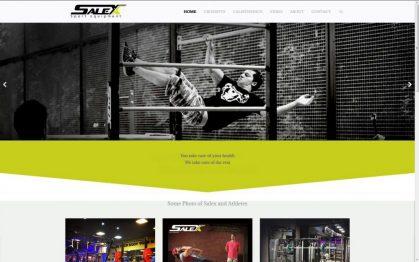 salex - веб-дизайн